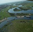 Imagem Pesquisadores apresentam resultados de estudos para conservação do Pantanal