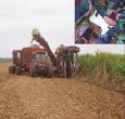 Imagem Método inovador automatiza interpretação de imagens de satélites para mapeamentos agrícolas
