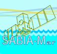 Imagem Projeto do satélite SABIA-Mar é apresentado à indústria