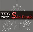 Imagem Astrônomos de todo o mundo se reúnem em São Paulo. Texas Symposium terá palestras abertas ao público