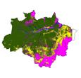 Imagem INPE estima 5.843 km² desmatados na Amazônia em 2013