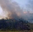 Imagem Campanha investigará emissões de queimadas na Amazônia