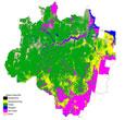 Imagem INPE inaugura na Amazônia centro para difusão internacional de tecnologias de monitoramento