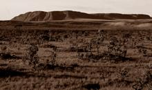 Imagem INPE divulga dados sobre o desmatamento do bioma Cerrado