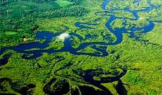 Imagem Atuação do INPE no monitoramento de biomas brasileiros foi destaque na COP 23