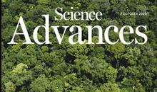 Imagem Estudo do INPE MCTI sobre a Floresta Amazônica é capa na revista Science