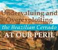 Imagem Estudo aponta os riscos da exploração do Cerrado