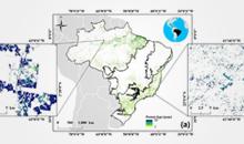 Imagem Pesquisadores do INPE mapeiam pela primeira vez florestas secundárias em todos biomas do Brasil