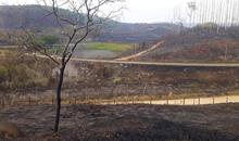 Imagem Nota à imprensa sobre incêndio florestal ocorrido no campus do INPE na cidade de Cachoeira Paulista