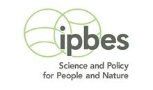 Imagem INPE participa de relatório do IPBES sobre declínio da natureza