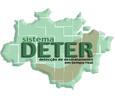 Imagem Alertas do DETER estimam 195 km² de corte raso na Amazônia entre novembro e janeiro