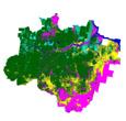 Imagem Desmatamento na Amazônia cai 14%. <br>INPE estima 6.451 km2 no período 2009/2010